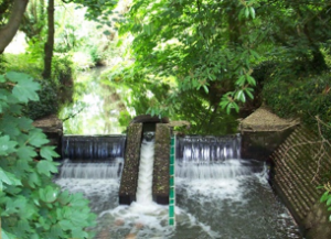 The fish ladder at Barcombe Mills